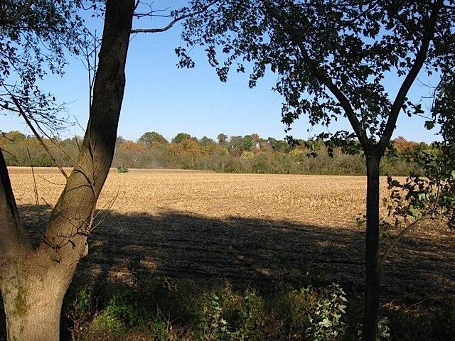 Adams Mill Oxbow field in Carroll County Indiana
