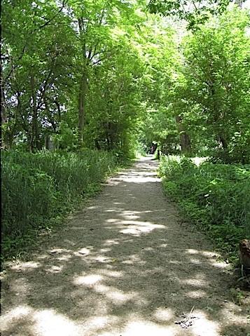 VanScoy Townpath Trail in Carroll County